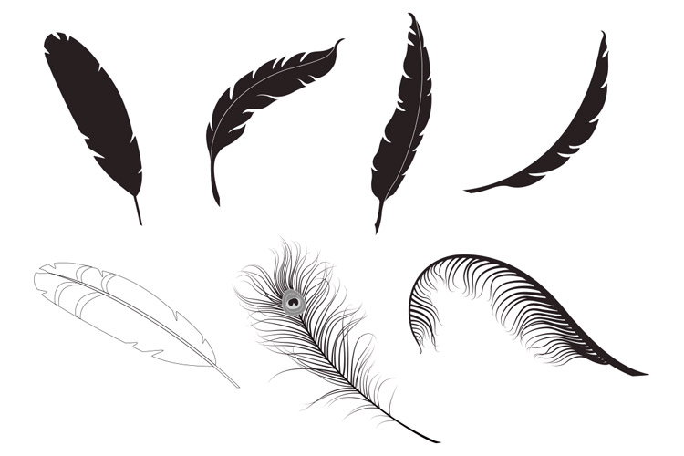 feather vector pack 1 design panoply rh designpanoply com feather vector design feather vector freepik