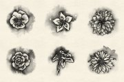 Watercolor Flowers Brush Pack 1