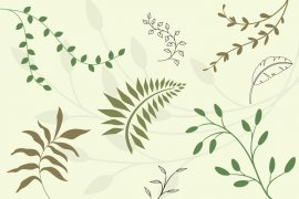 Floral Vector Pack 1