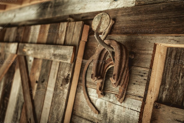 Rusty Hanging Horseshoes