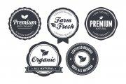 Vintage Circular Badges Vector Pack 3