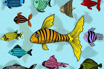 Illustrated Fish Vector Pack 1