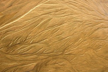 Wet Sand with Erosion Lines